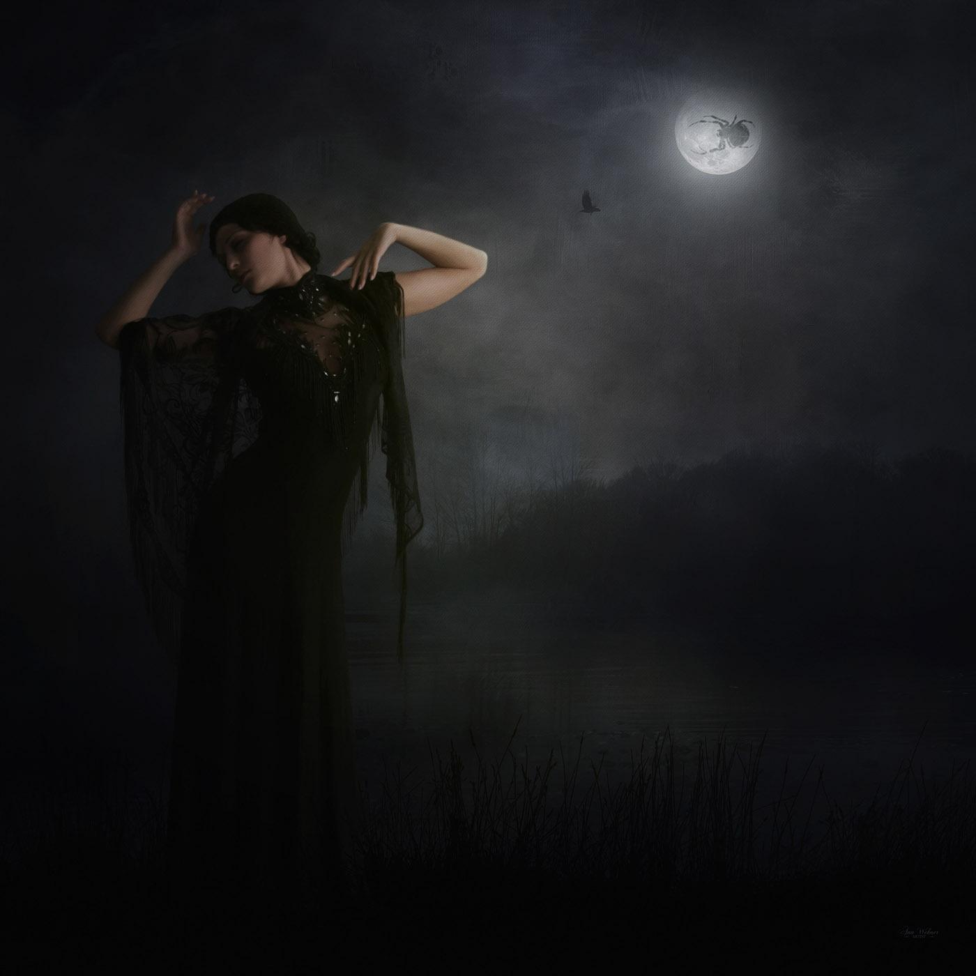 Ann Wehner Photo Artistry